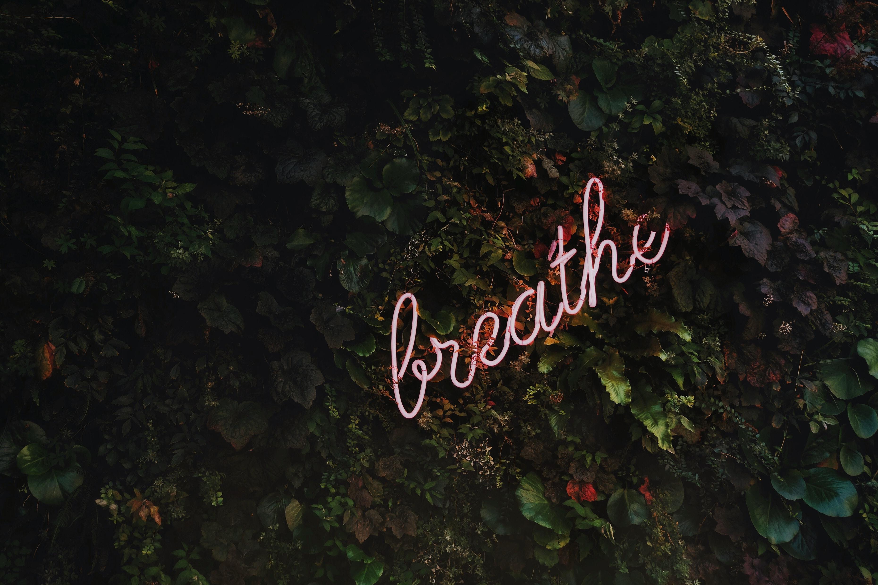 Stres, emocje, asertywność